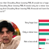Nearly 2 in 5 Pakistanis (42%) believe that Chaudhry Nisar leaving PML-N would be a huge loss for the party. 45% PML-N supporters opines the same.